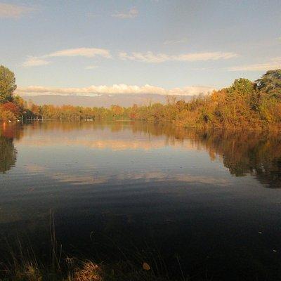 Vista del lago da una sua sponda.