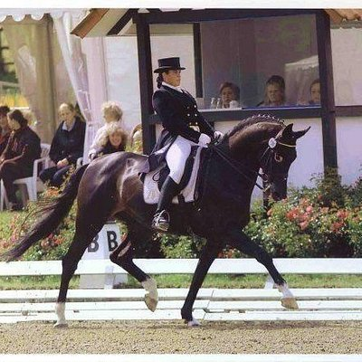 Our very own head coach representing Barbados in the art of Dressage