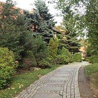 Path to Brama