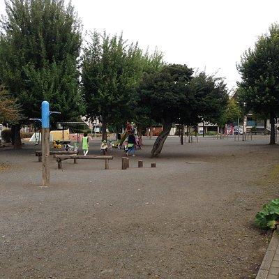公園の全景