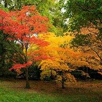 Beautiful autumn day at the arboretum