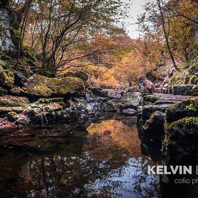 Lovely autumn colours
