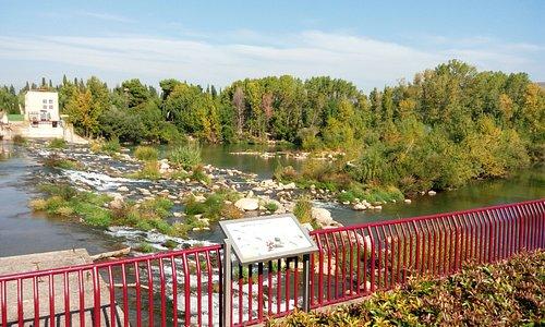 Precioso paseo a la orilla del río que une el parque de la Ribera y el parque del Ebro... Es muy