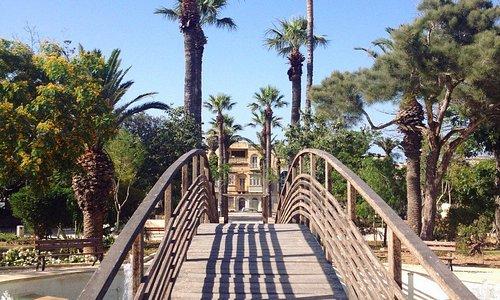 мостик через фонтан