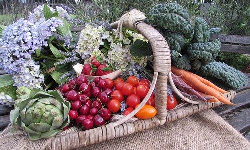 Fresh seasonal produce from The Loch Farm Stall