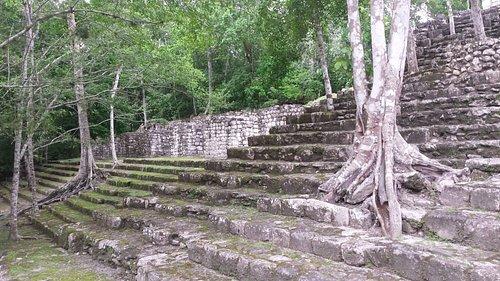 Stairs at the Calakmul ruins