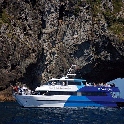 Bay of Islands Day Tour and Hole in the Rock Cruise