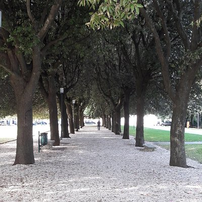 Viale alberato dento i giardini del Girfalco