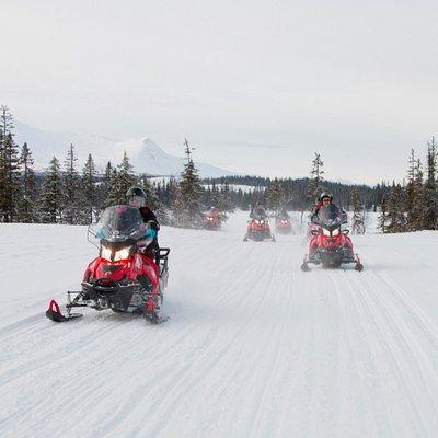 Skoter i Åre med Åreguiderna / Snowmobile in Åre with Åreguiderna