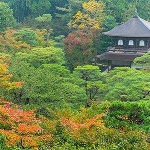Ginkaku-ji as seen from the pathway near the upper garden--in November.