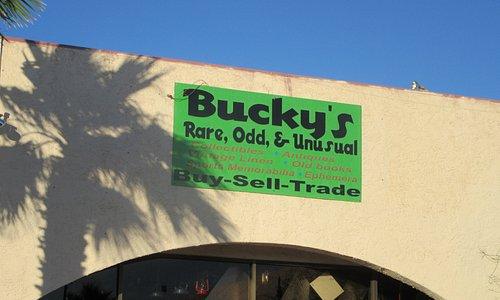 Bucky's Rare, Odd, and Unusual, Lake Havasu City, Az