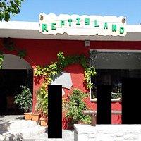 Reptisland in Melodoni