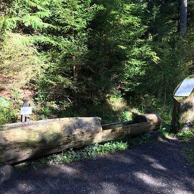 Le Chemin des Fontaines des Bois du Jorat