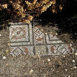 Una parte dei mosaici di uno dei locali adibiti (presumibilmente) per le terme.