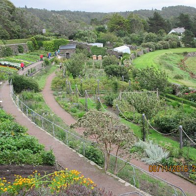 Looking down on walled garden