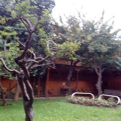 Biblioteca pública ubicada en el histórico Hospital de Dolores