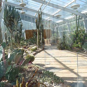 Inside one of the locked greenhouses