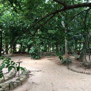 New Ranweli Spice Garden Kandy