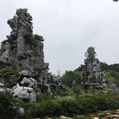 Stone Exposition Park