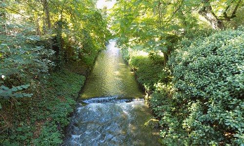Canal Alter Botanischer Garten