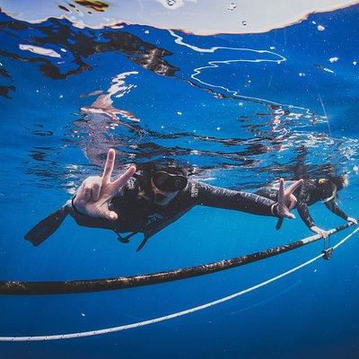 Happy divers at Freedive Hawaii