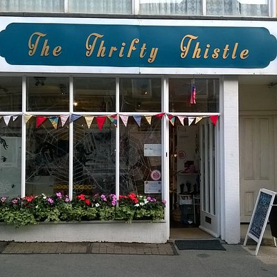 The Thrity Thistle