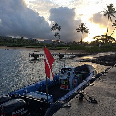Good morning Kauai