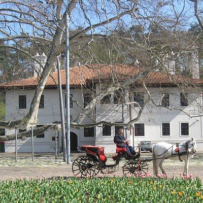 Princ Milos Residence, Topcider Park, Belgrade, Serbia