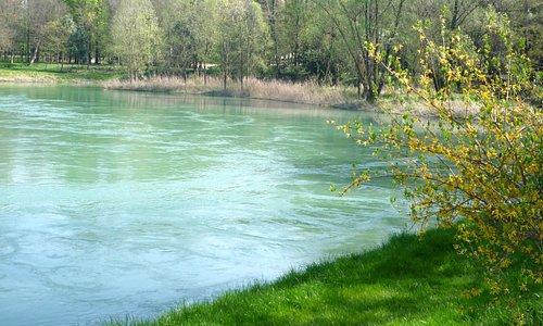 La tranquille acque del Livenza