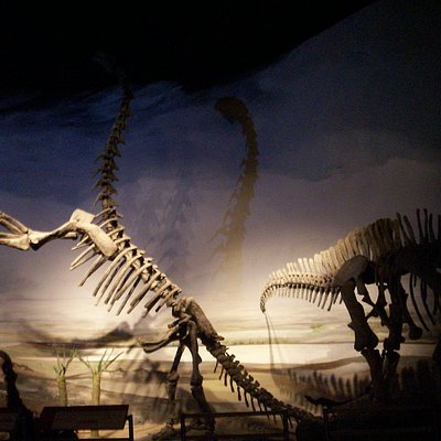 Otra vista del interior del museo