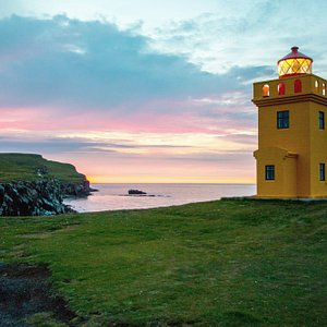 Sightseeing on land and by boat in Grímsey island with Arctic Trip