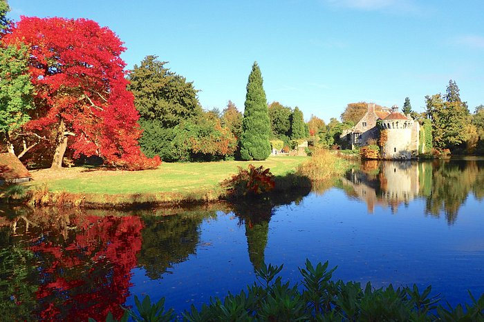 A view over water towards Scotney Castle ruins with a gorgeous red-leafed tree.