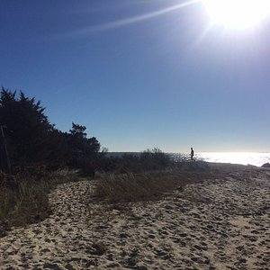 sound-side beach