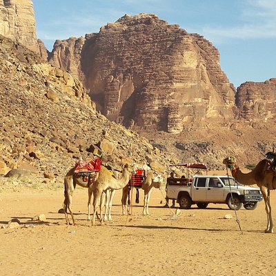 Camels and Jeep while stopped at one of the sites of Wadi Rum