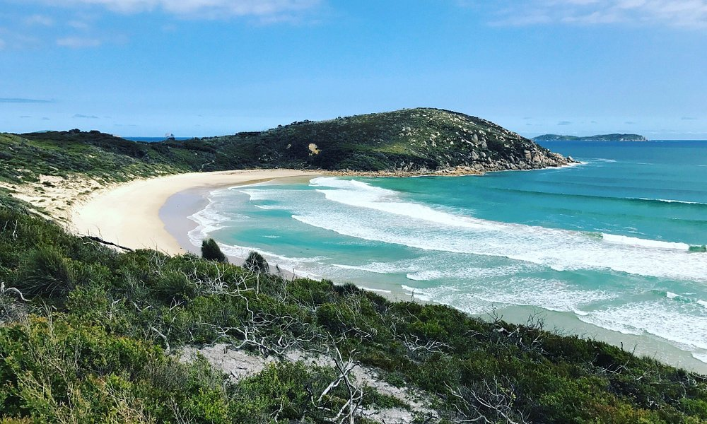 Beautiful picnic bay, sneaky beach and whiskey bay. Absolutely loved hiking around Wilsons prom.