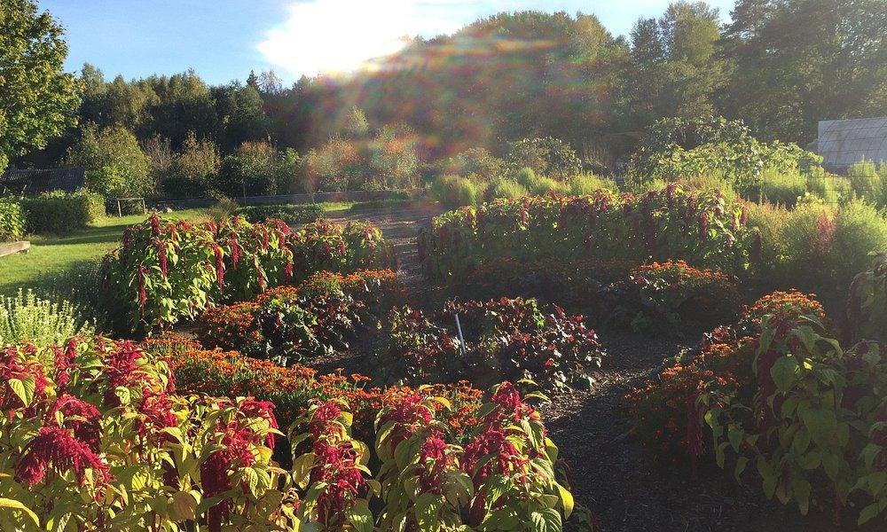 Orangeriträdgården vid Österbybruks herrgårdsområde
