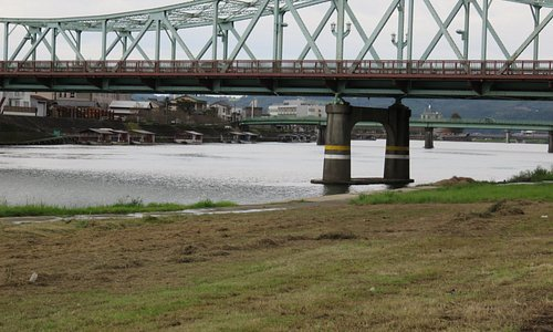 昼間の三隈川 岸辺に屋形船