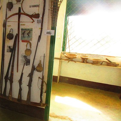 Traditional and post Traditional Forest Hunting Weapons