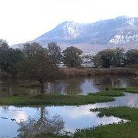 Le marais, les montagnes et les oiseaux depuis l'observatoire du Château de Thomas II