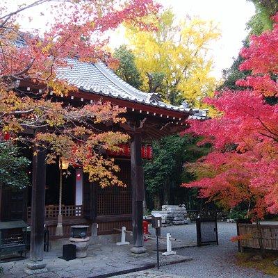 京都御所の表鬼門を守護する天台宗のお寺で、紅葉も有名です。紅葉には少し早いお参りかもとは思いましたが、やはり少し早かったです。ちょうど紅葉まつりに向けての準備をされていましたが、人混みもなく、