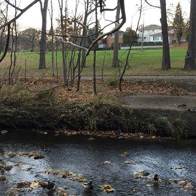 West Deane Park