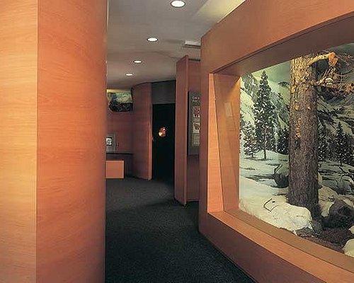 Centro visitatori PNGP