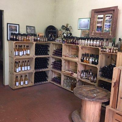 Fotos da visita na Casa Müller. Ótimo lugar para conhecer e degustar um bom vinho