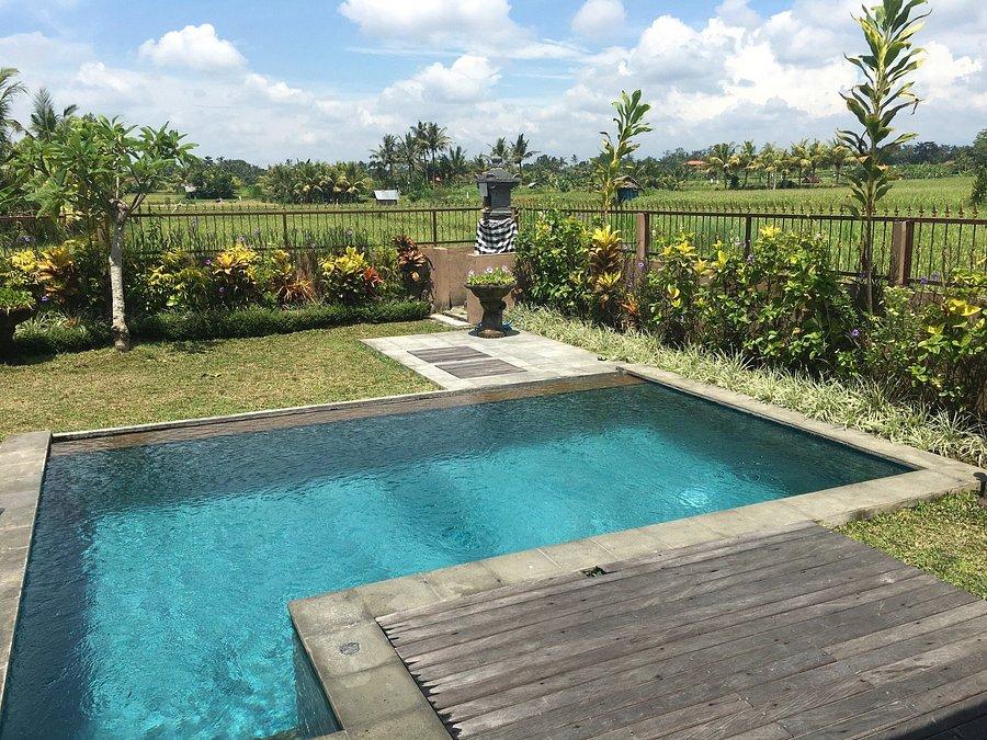 Villa Bali Green Prices Reviews Ubud Tripadvisor