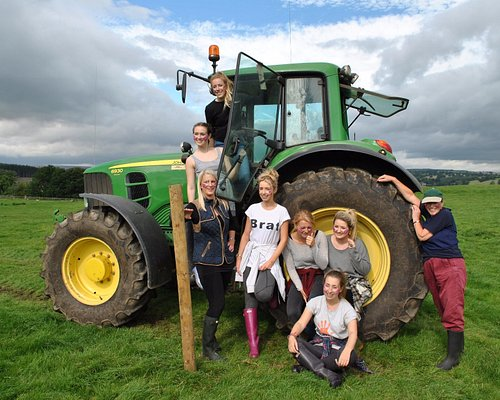 Tractor driving! An essential part of the fun on the farm!