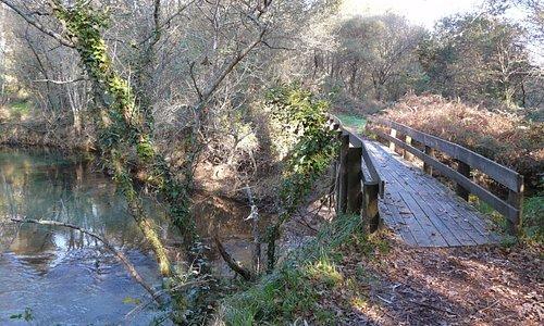 Ponte no trajecto de um dos trilhos existentes