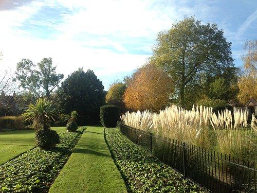 Main garden view