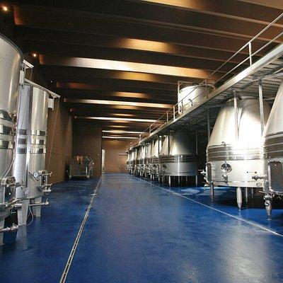 Sala de depòsitos donde se efectuan los procesos de fermentación y almacenaje del vino