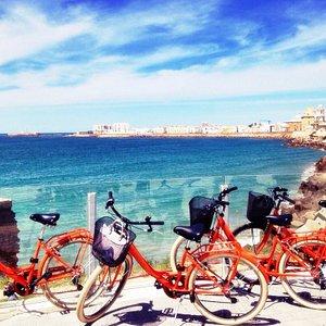 Cadiz bike tour, Descubre los rincones mas especiales de la ciudad con nuestros tours guiados. R