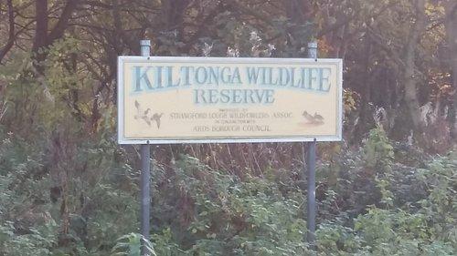 Kiltonga Reserve